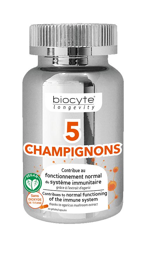 Pilulier-5-Champignons-V1a-0518